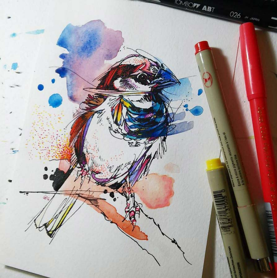 Illustration of a bird with markers